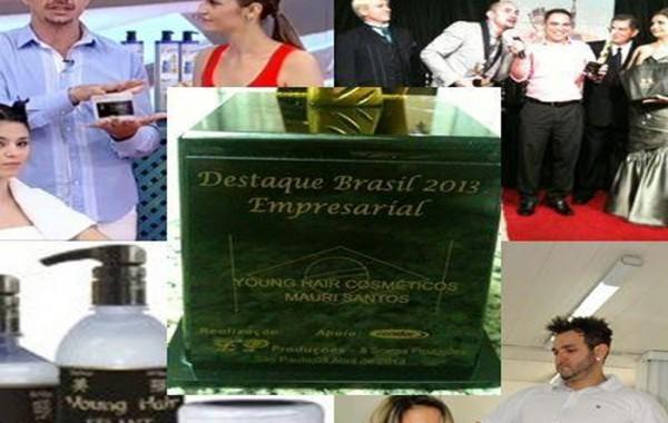 Destaque Brasil 2013 Empresarial